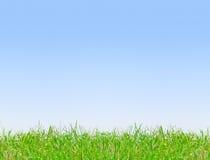 Freier Hintergrund des blauen Himmels Lizenzfreies Stockfoto