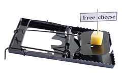 Freier Käse Lizenzfreies Stockbild