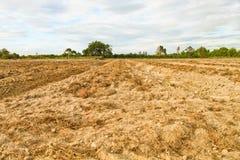 Land für Bauernhof Lizenzfreie Stockbilder