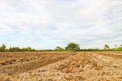 Land für Bauernhof Stockfotografie