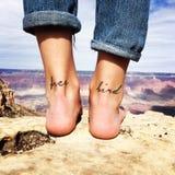 Freier Vogel Grand Canyon Stockbild