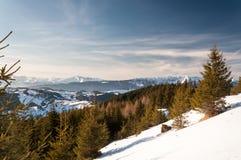 Freier Wintertag stockbilder