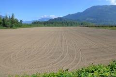 Freies Bauernhof-Feld gepflogen und planiert stockfoto