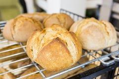 Freies rundes Brot des Glutens Stockfotos