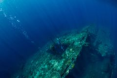 Freies Tauchermanntauchen am Schiffbruch, Unterwasserozean lizenzfreie stockfotografie