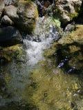 Freies Wasser stockbilder