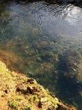 Freies Wasser Stockfoto