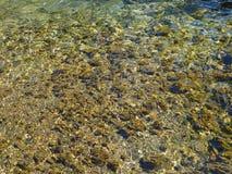 Freies Wasser Stockfotos