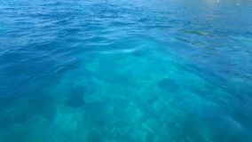 Freies Wasser Lizenzfreie Stockfotografie