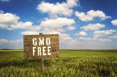 FREIES Zeichen GMOs auf Feld des Roggens Lizenzfreie Stockfotos
