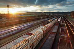 Freight Station with trains Royalty Free Stock Photo