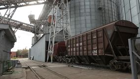 Freight train with agricultural crops as cargo transportations moving at big grain terminal near sea. Unloading grain. From railway carriage to elevator stock video footage