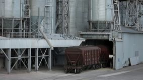 Freight train with agricultural crops as cargo transportations moving at big grain terminal near sea. Unloading grain. From railway carriage to elevator stock footage
