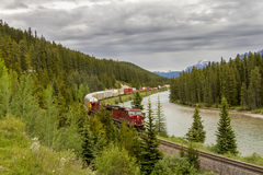 Freight Train in the Bow Valley - Banff National Park Stock Photography