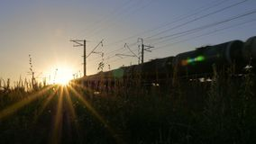 The train moves through beautiful sunlight. The freight train that carries the tanks for oil, moves through the beautiful sunlight. Wildflowers in the stock video footage