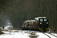 Freight train at Gemenc. A tree-hauler freight train at Gemenc forest. Gemenc is the largest flood-basin forest in Europe Royalty Free Stock Photos