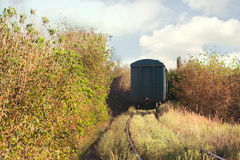 Freight train leaving for the forest tunnel in the autumn day Stock Images