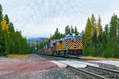 Freight Train. A long freight train rolls down the tracks through a pine forest on a foggy morning stock photo