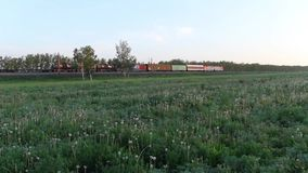 Freight train passing on a railroad track in the field. Freight train passing on a railroad track in the countryside, Trans-Siberian Railway stock video footage