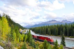 Freight train running in Canadian Rockies in Autumn, Canadian Rockies. Alberta,Canada stock photography
