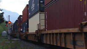 Freight train rushing past in british columbia stock video