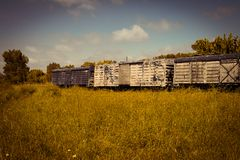Freight train wagons abandoned in the field. Transportation of goods. royalty free stock photo