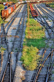 Freight trains at railway station Royalty Free Stock Photos