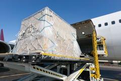 Freigth do carregamento no avião Foto de Stock Royalty Free