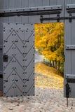 Freiheit - Außenwelt Stockbilder
