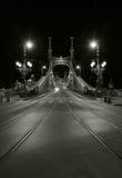 Freiheitbrücke, Budapest Stockbilder