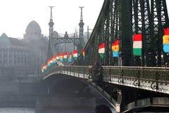 Freiheitbrücke mit Markierungsfahnen lizenzfreie stockfotos