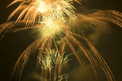 Freiheits-Festival-Feuerwerke Stockfotografie