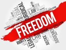 Freiheitswortwolke lizenzfreie abbildung