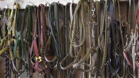 Freios do cavalo que penduram em um celeiro filme