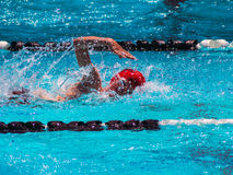 Freistilschwimmenhitze Stockfoto