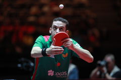 FREITAS Marcos on serve. FREITAS Marcos from Portugal on serve. Men`s Singles Round of 16 world table tennis championships in Dusseldorf. 29 May 6 june 2017 Stock Photography