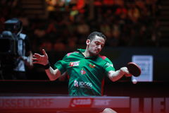 FREITAS Marcos top spin. FREITAS Marcos from Portugal top spin. Men`s Singles Round of 32 world table tennis championships in Dusseldorf. 29 May 6 june 2017 Stock Photos