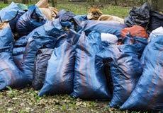 Freiwillig erbieten, N?chstenliebe, Reinigung, Leute und ?kologiekonzept - Abfalltaschen, die Bereich im Park s?ubern stockbilder
