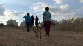 Freiwillige childern gehende Hunde des Tierheims stock video