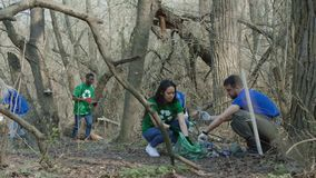 Freiwillige, die Abfall im Holz sammeln stock video