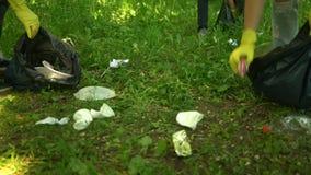 Freiwilliger reinigen Plastikabfall im Sommerpark Viele mehr ?kologiebilder in meinem Portefeuille stock footage