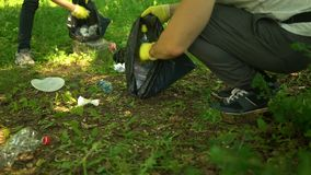 Freiwilliger reinigen Plastikabfall im Sommerpark Viele mehr ?kologiebilder in meinem Portefeuille stock video footage