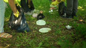 Freiwilliger reinigen Plastikabfall im Sommerpark Viele mehr ?kologiebilder in meinem Portefeuille stock video