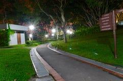 Freizeitweg in der Nacht in einer grünen Parkstraße Lizenzfreies Stockbild