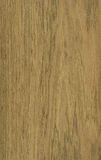 Frejo wood veneer texture Royalty Free Stock Photography