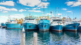 Fremantle fishing fleet, Fremantle Boat Harbour Western Australia. Fishing boats moored at Fremantle Fishing Boat Harbour Western Australia on bright sunny day Royalty Free Stock Photography