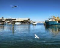 FREMANTLE VÄSTRA AUSTRALIEN - November 16, 2014 - sikt av den Fremantle fiskebåthamnen arkivbilder