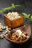 Fremented soy beans NATTO Stock Photography
