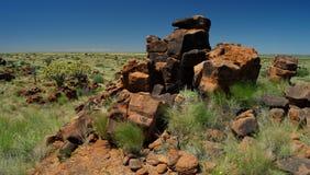Fremi il campo sportivo dei giganti e dell'albero vicino a Keetmanshoop, Namibia Fotografia Stock Libera da Diritti