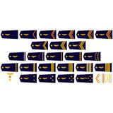 French Air Force insignia Royalty Free Stock Photos
